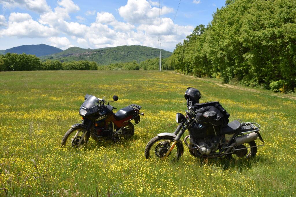 Reiseenduros stehen in einer Frühlingswiese
